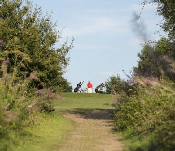 Path up to Hole at Crondon Park