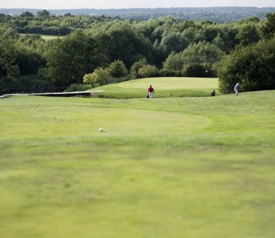 Overall of People Playing Golf at Crondon