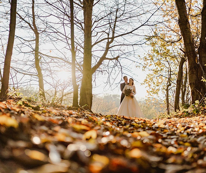 How To Make The Most of Your Autumn Wedding at Crondon Park
